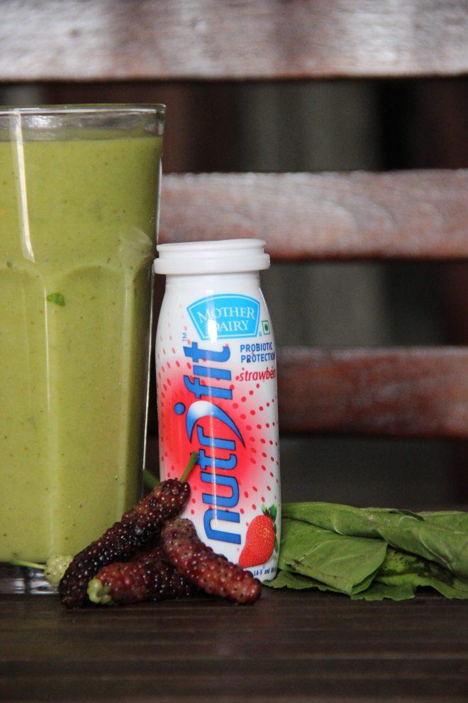 Proboitic Green | mitzitup.com