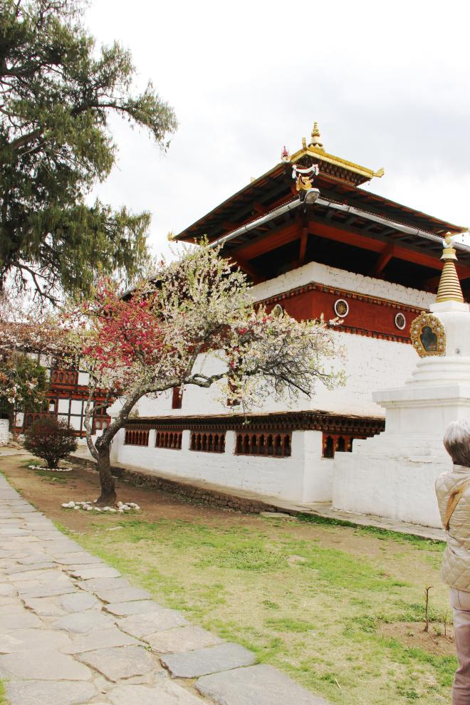 Kichu Lakhang, Bhutan | mitzitup.com